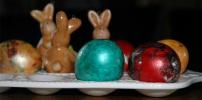 Nicht nur zu Ostern frische Eier